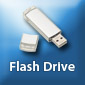 Flash Drives