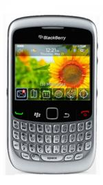 BlackBerry Curve 8520 Dark Silver Mobile Phone on Orange PAYG